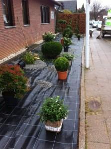 Gartenpflege 5